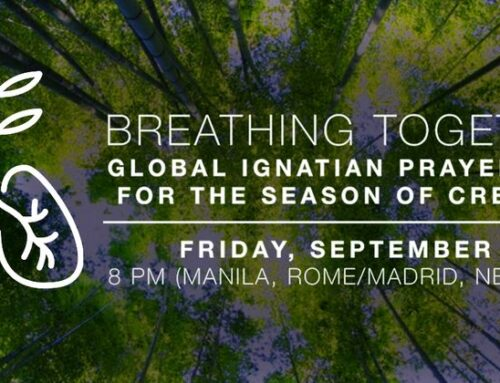 Breathing together – Global Ignatian prayer vigil for the season of creation